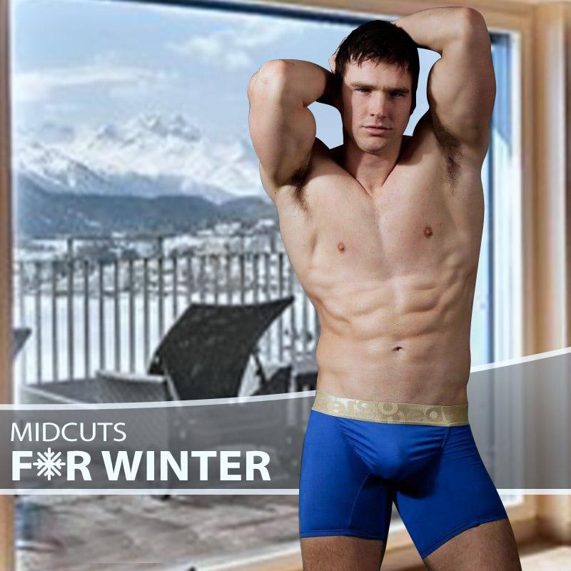 Top 5 Midcut Boxer Briefs for Winter